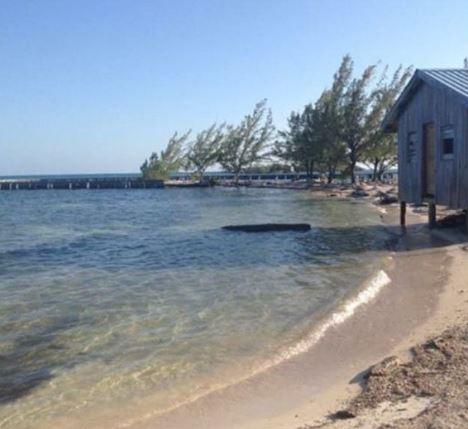 aa-a-island1