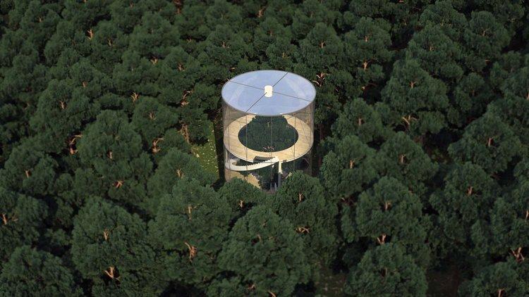 aa-a-circular-treehouse-1