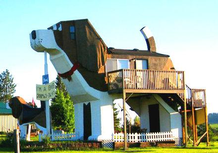 aa-a-beagle-hotel